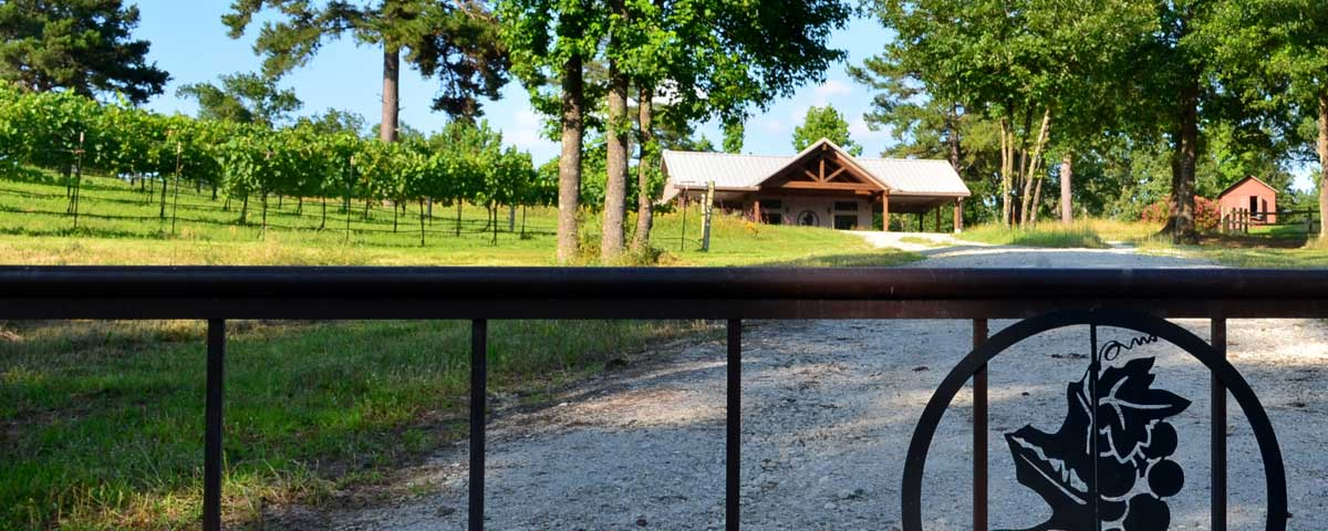 The Best Winery In East Texas