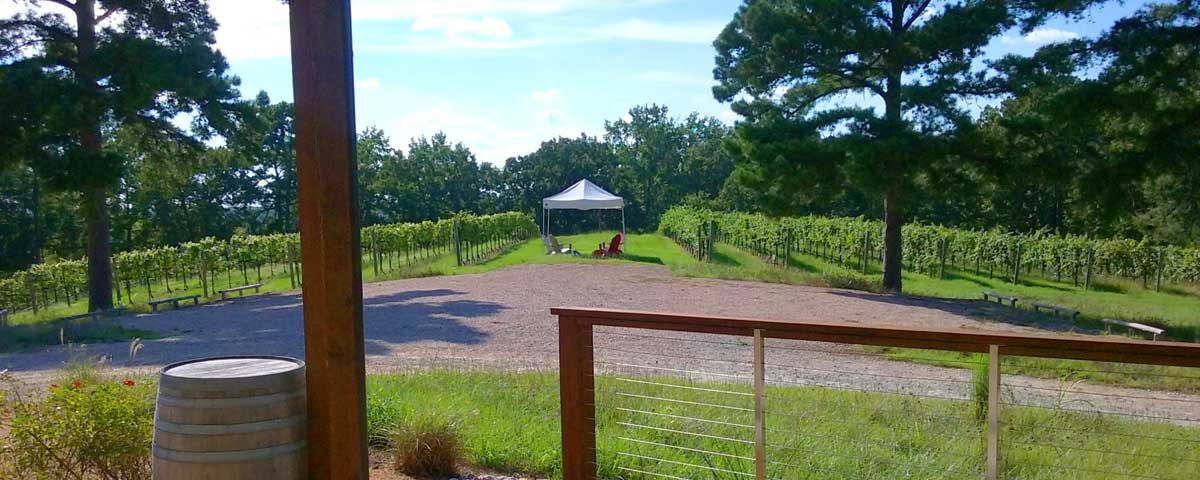 East Texas Vineyards and Winery